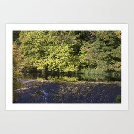 Water of Leith Edinburgh 1 Art Print
