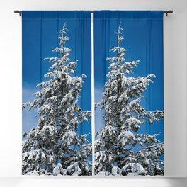 Winter Forest Fir Tree Snow IX - Nature Photography Blackout Curtain