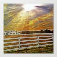 Field of Rays Canvas Print