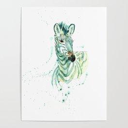 Zebra 3 Poster