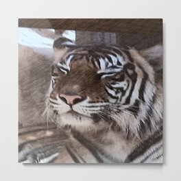 Impressive Animal - sketchy Tiger Metal Print