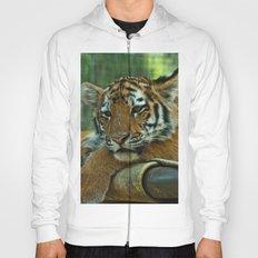 Baby Tiger Hoody