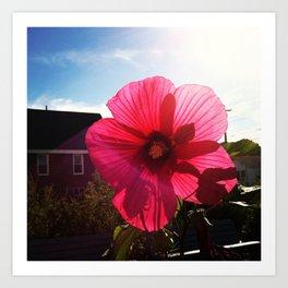 happy hibiscus  Art Print