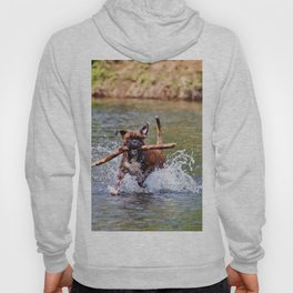 Bailey Plays in the River Hoody