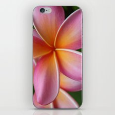 Places of the Heart iPhone & iPod Skin