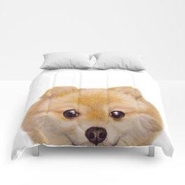 Pomeranian Dog illustration original painting print Comforters