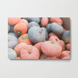 Pile o' Pumpkins Metal Print