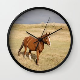 Horse in Stormy Landscape Photograph Wall Clock