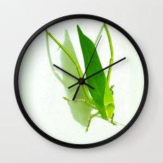 Kadydid Wall Clock