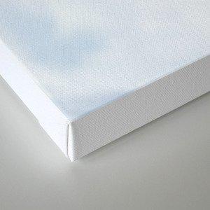 Ice Cold Canvas Print