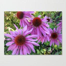 Purple Splender Canvas Print