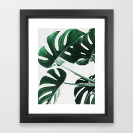 Monstera, Leaves, Plant, Green, Scandinavian, Minimal, Modern, Wall art Framed Art Print