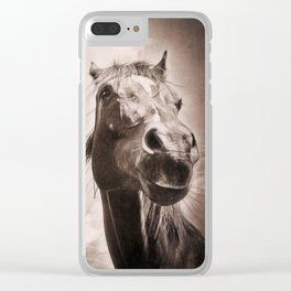 Arabian Horse Spring Storm  Clear iPhone Case