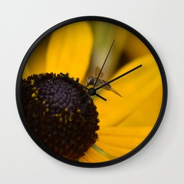 Beautiful Bee feeding on Black Eyed Susan Wall Clock