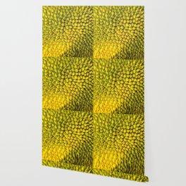 Jackfruit Wallpaper