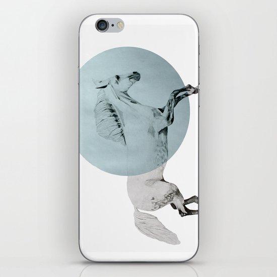 white horse iPhone & iPod Skin