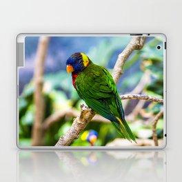 Lorikeet Laptop & iPad Skin