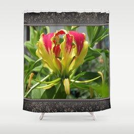 Gloriosa Rothschelidiana Shower Curtain