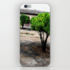 Courtyard iPhone & iPod Skin