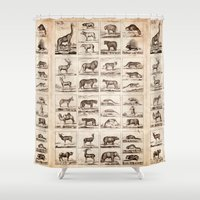 animals Shower Curtains featuring Animals by Le petit Archiviste