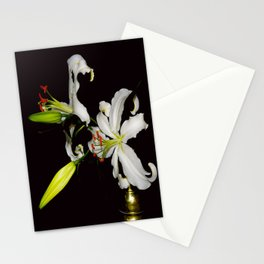 Lillie's and Old Brass Stationery Cards