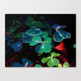 Field Of Clover Canvas Print