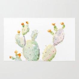 Prickly pear cactus. Opuntia Rug