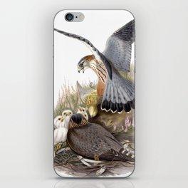 Falcon iPhone Skin