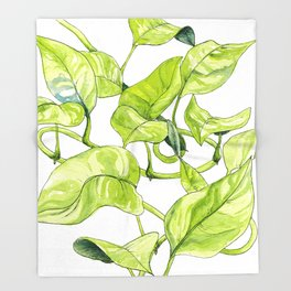Devils Ivy Illustration Throw Blanket