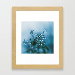 Winter Kills Framed Art Print