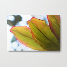 Tropical Ti Leaves Metal Print