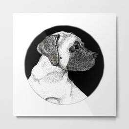 English Mastiff Puppy Metal Print