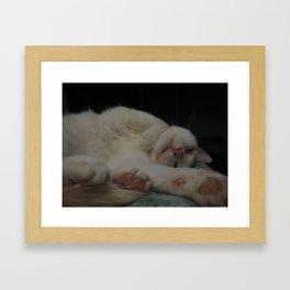 Fuzzy Tummy Sleepy Kitty Framed Art Print