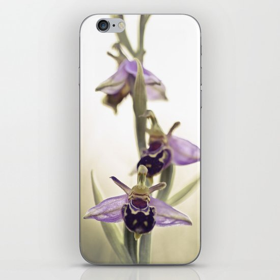 Ophrys Apifera iPhone & iPod Skin