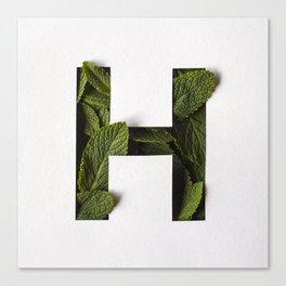 Hierba Buena - Mint Helvetica Canvas Print