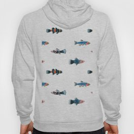 Swim With The Fishes Hoody