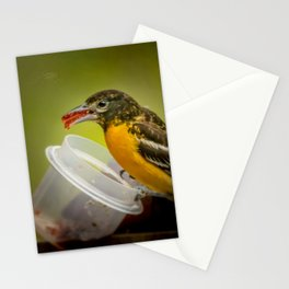 Mouth Full Stationery Cards