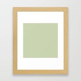 Plain Solid Color Seafoam Green Framed Art Print