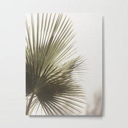 Palm Leaf Tropical Metal Print