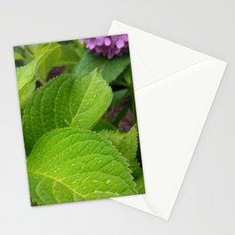 Hydrangea Leaf Stationery Cards