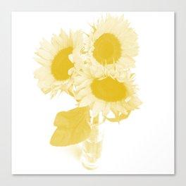 Flower Tournesol Canvas Print
