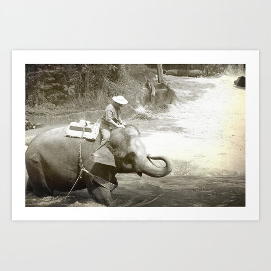 Elephant Fun Art Print