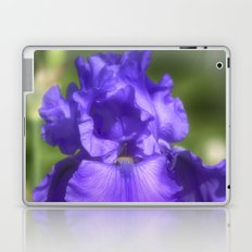 Purple Bearded Iris Laptop & iPad Skin