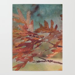 Leaves Against an Autumn Sky Poster