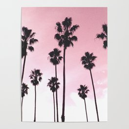 Palms & Sunset Poster