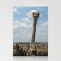 ostrich Stationery Cards featuring Ostrich by wendygray