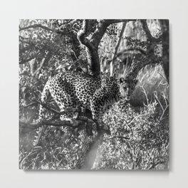 African Leopard Print Metal Print
