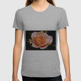 Dewdrop Rose T-shirt