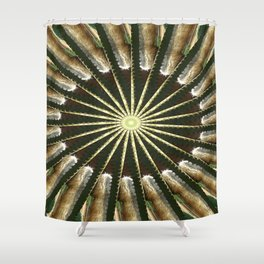 Cactus Garden Kaleidoscope 11 Shower Curtain