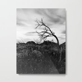 to the left Metal Print